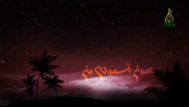 تصویر از نماهنگ مهمون آسمونی من با نوای حاج محمود کریمی